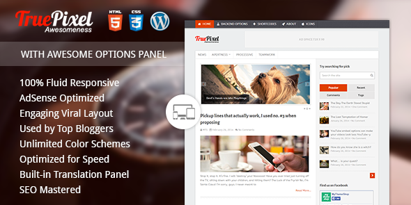 TruePixel v4 1 0 - Premium WordPress Blogging Theme